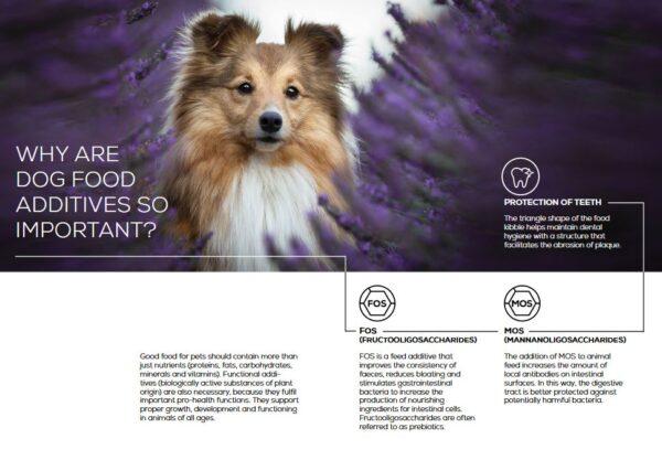 VetExpert Raw Paleo Puppy Mini Breed Premium getreidefreies Hundefutter, Alleinfuttermittel, Trockenfutter, Nassfutter, Hundebedarf, Hundenahrung, Hundeernährung